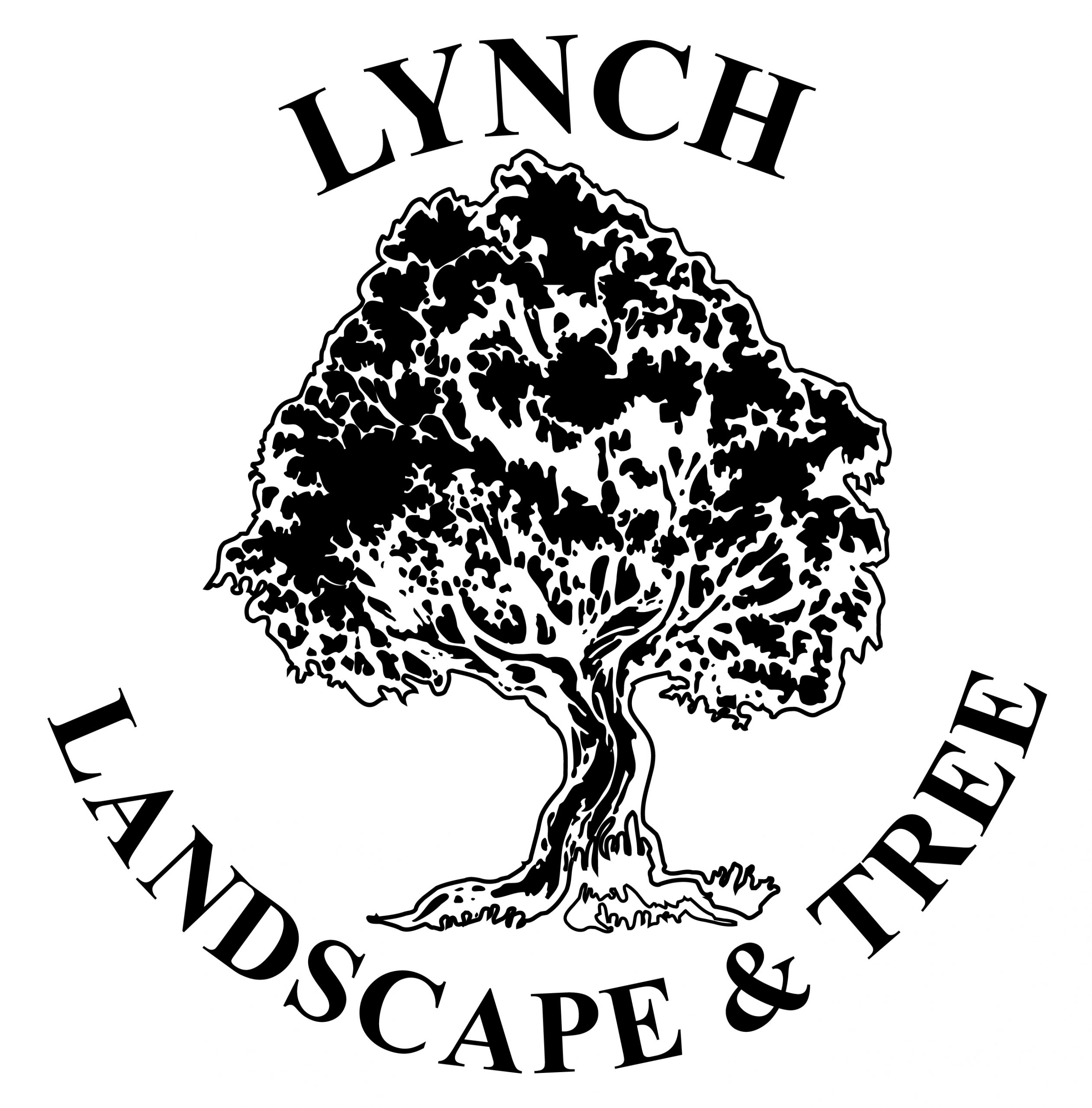Lynch Landscape and Tree